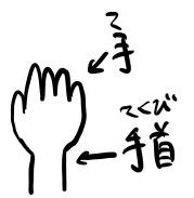 手と手首のイラスト