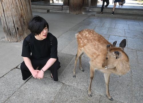 写真は奈良の鹿と僕ですが書籍のお取り扱いは大阪のnara様です