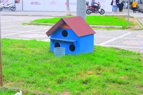 青い屋根に穴3つの猫ちゃん専用ハウス